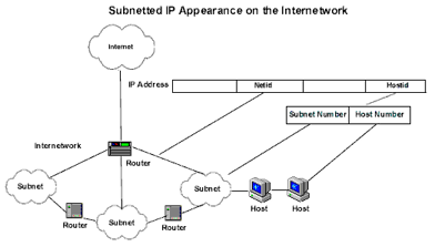 Subnetted Network